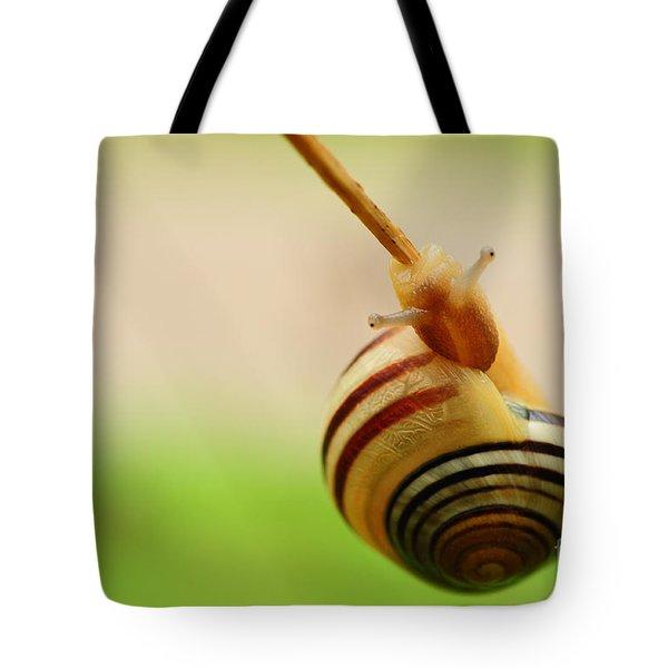 Snail  Tote Bag