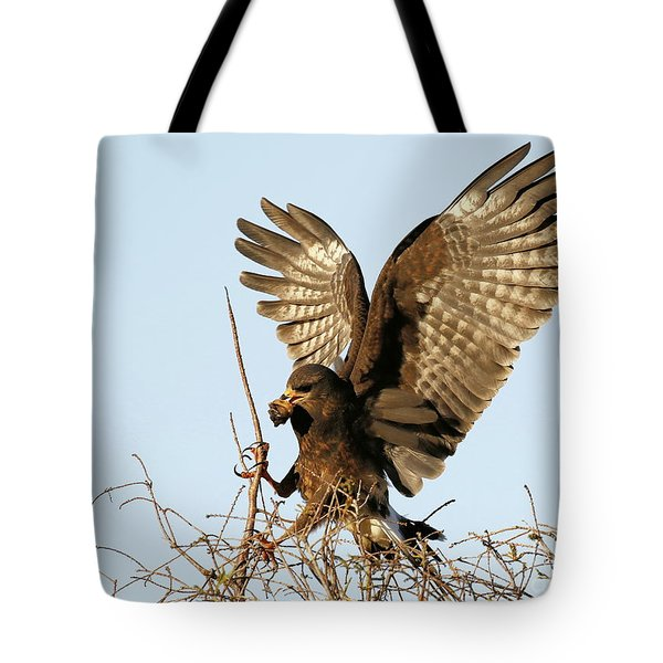Snail Kite Coming In Tote Bag