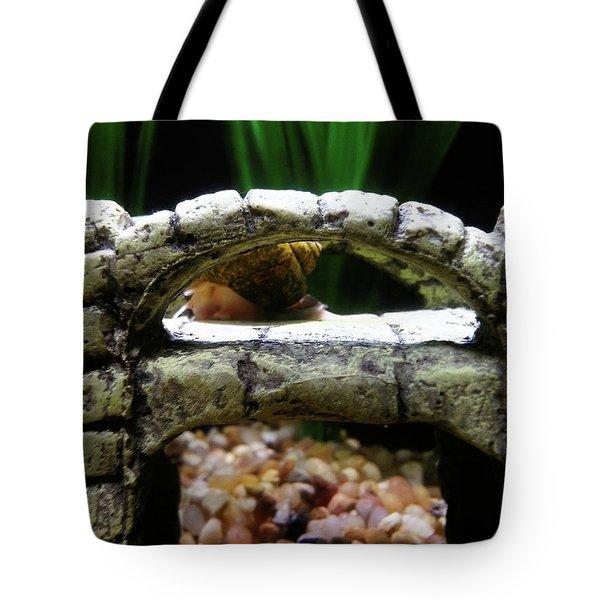 Snail Over A Bridge Tote Bag