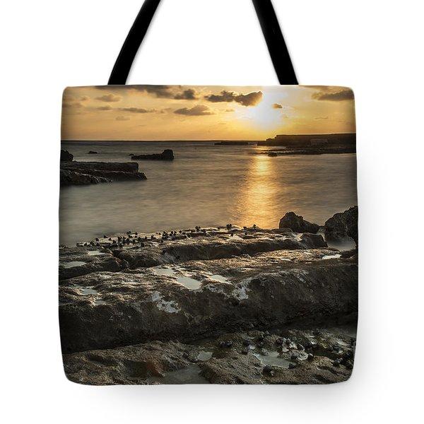 Snails At Sunset Tote Bag