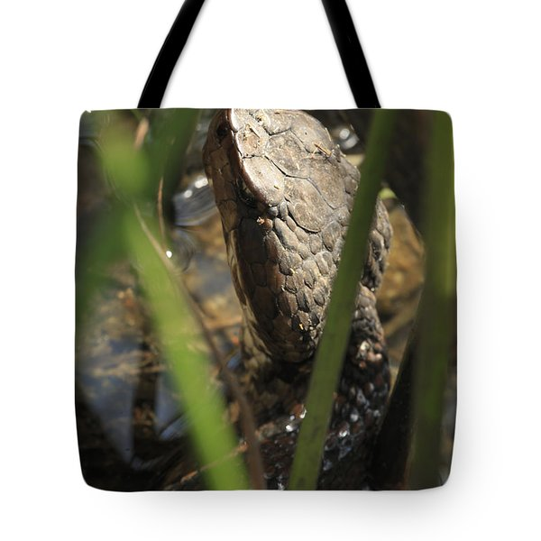 Snake In The Water Tote Bag