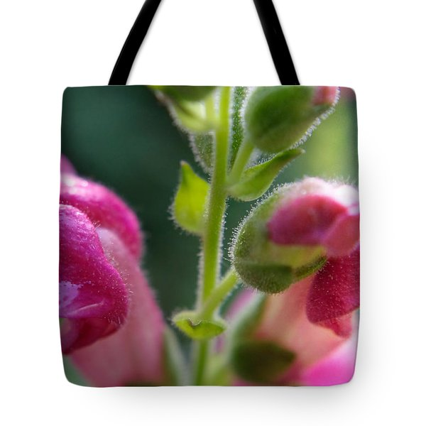 Snapdragon Hairs Tote Bag by Adria Trail