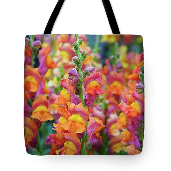 Snapdragon Rainbow Tote Bag