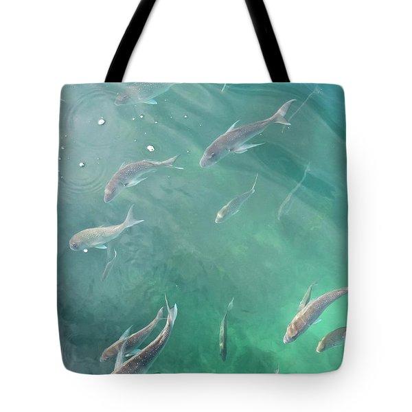 Snappa Fish, Pacific Ocean Tote Bag