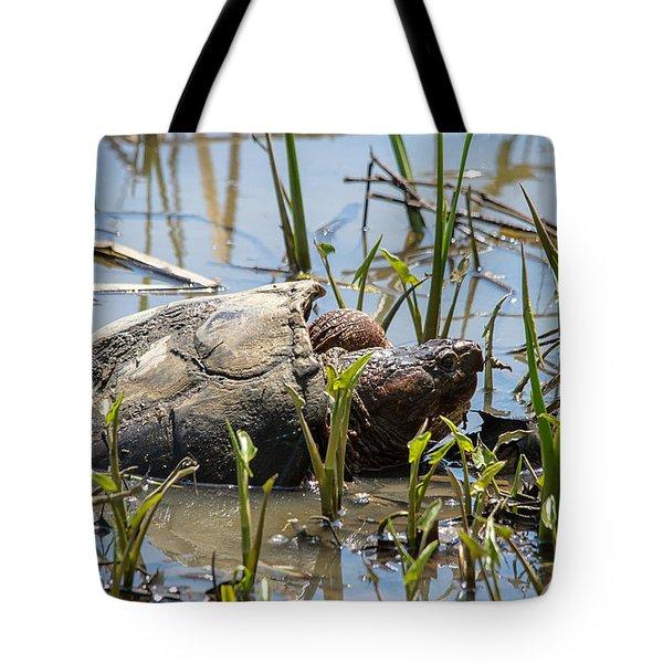 Snapper Tote Bag