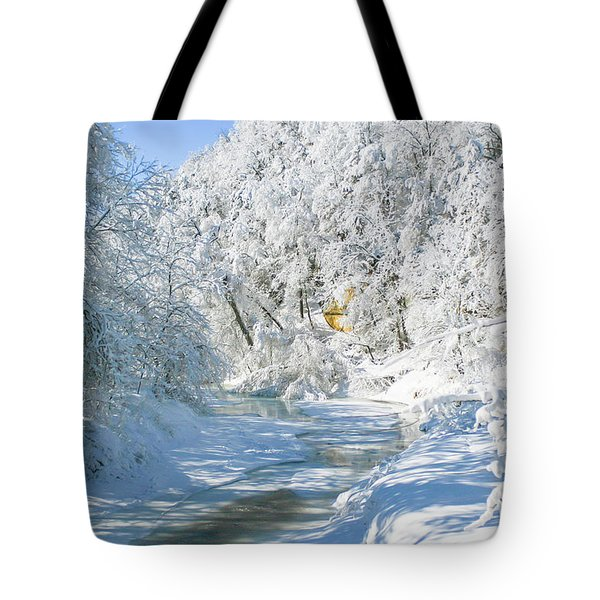 Snl-1 Tote Bag