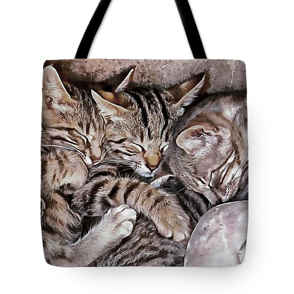 Snoring Purrs Of Kitten Brothers Tote Bag