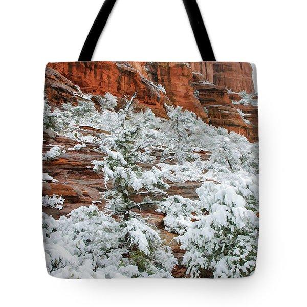 Snow 06-051 Tote Bag by Scott McAllister