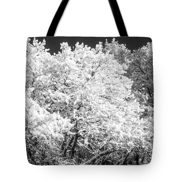 Snow And Frost On Trees In Winter Tote Bag by John Brink