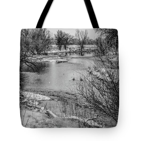 Tote Bag featuring the photograph Snow Bird by Tyson Kinnison
