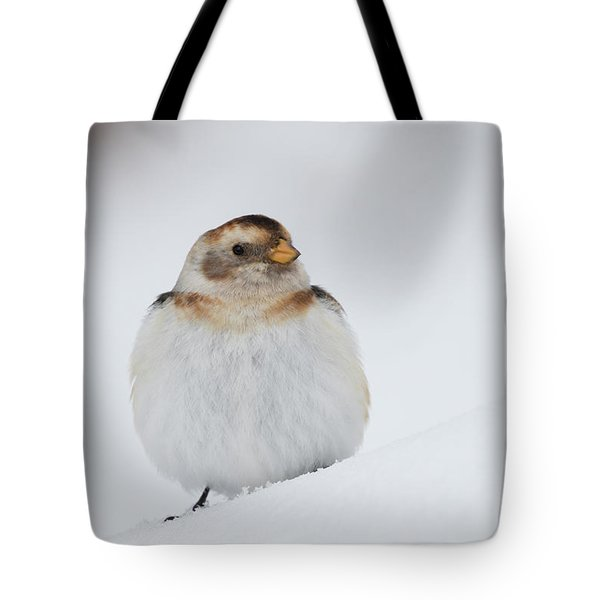 Tote Bag featuring the photograph Snow Bunting - Scottish Highlands by Karen Van Der Zijden