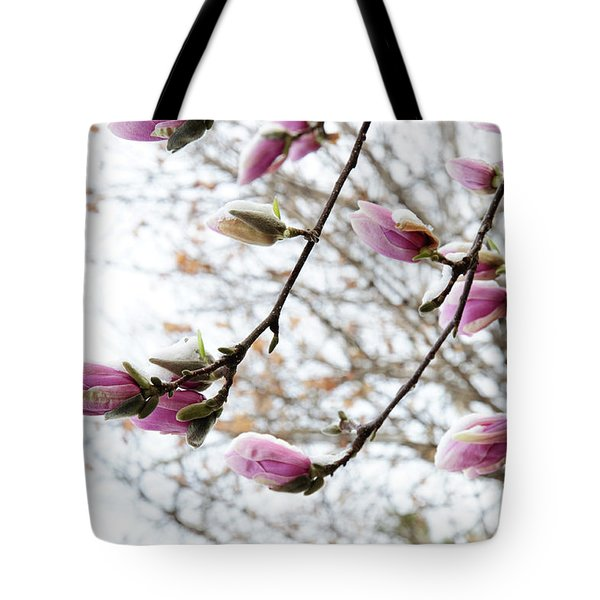 Snow Capped Magnolia Tree Blossoms 2 Tote Bag by Andee Design