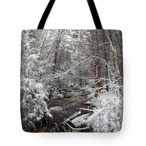 Snow Covered River Tote Bag