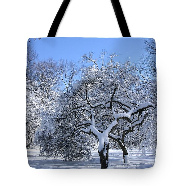 Tote Bag featuring the photograph Snow-covered Sunlit Apple Trees by Byron Varvarigos