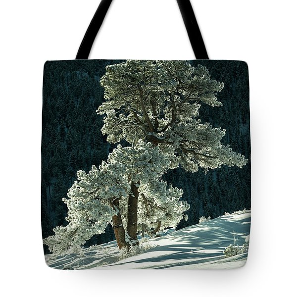 Snow Covered Tree - 9182 Tote Bag
