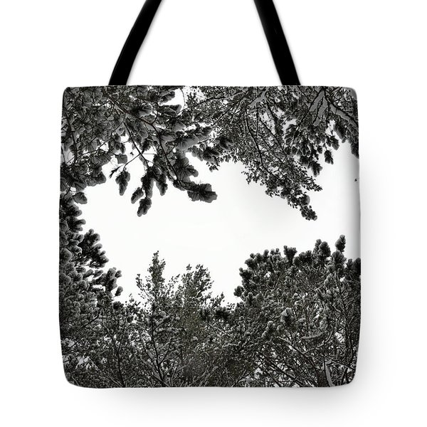 Snow Covered Trees Tote Bag by Birgit Tyrrell