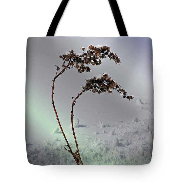 Snow Covered Weeds Tote Bag by Judy Johnson