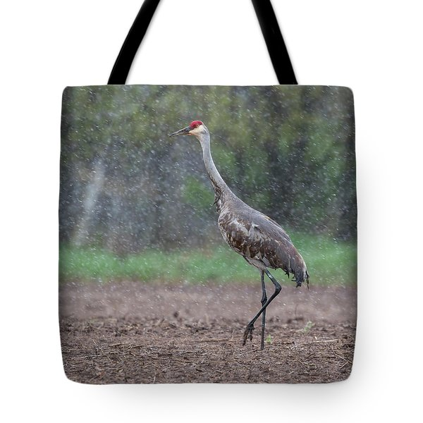 Snow Day Tote Bag by Thomas Young