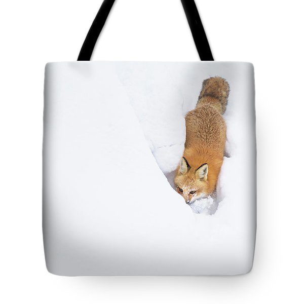 Tote Bag featuring the photograph Snow-diving Fox  by Mircea Costina Photography