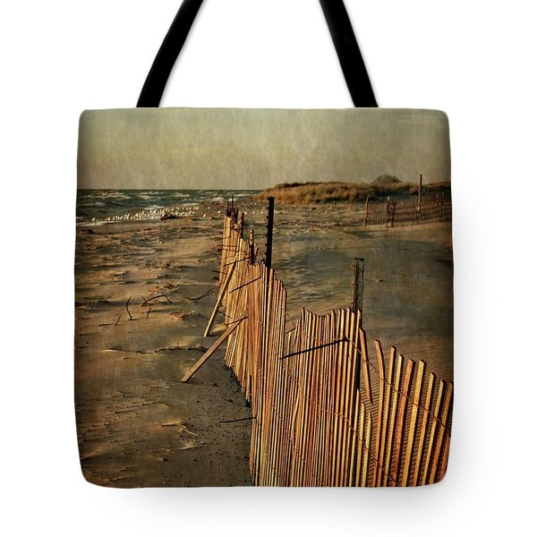 Tote Bag featuring the photograph Snow Fence And Lake Michigan by Michelle Calkins