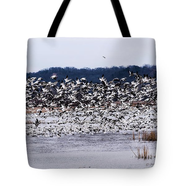 Snow Geese At Squaw Creek Tote Bag