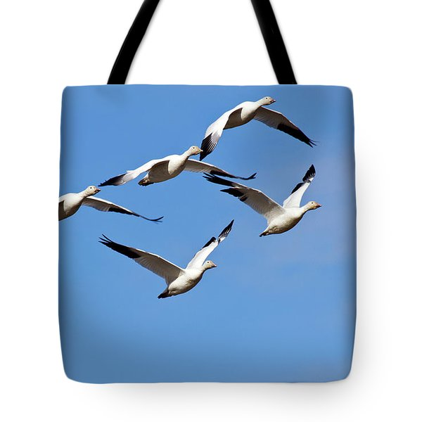Tote Bag featuring the photograph Snow Geese Flormation by Elvira Butler