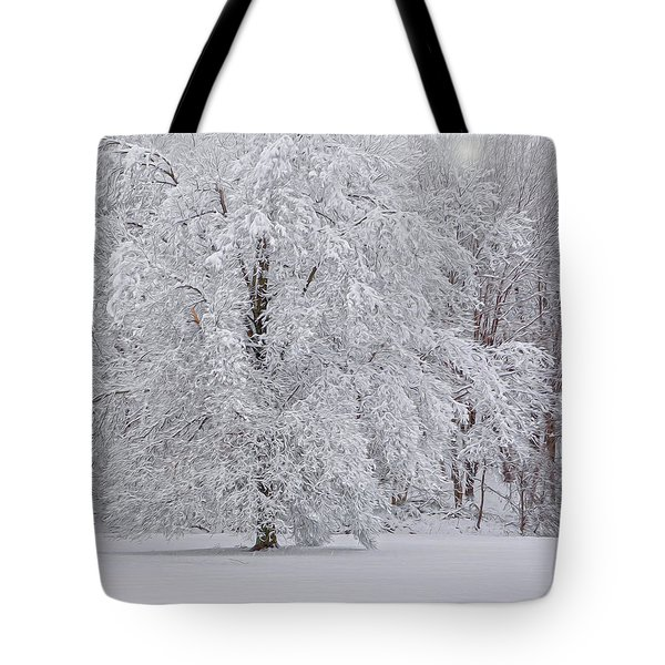 Snow Globe Tote Bag by Angelo Marcialis