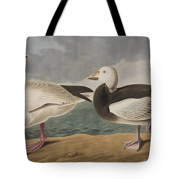 Snow Goose Tote Bag by John James Audubon