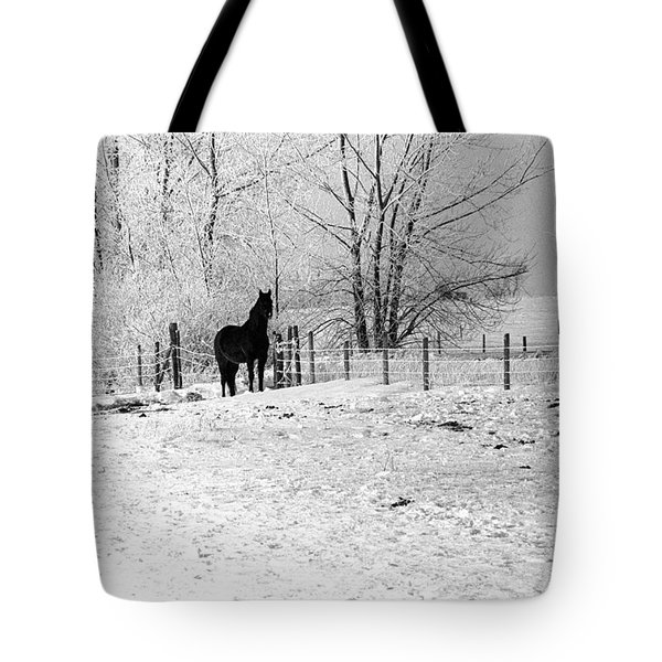 Snow Horse Tote Bag