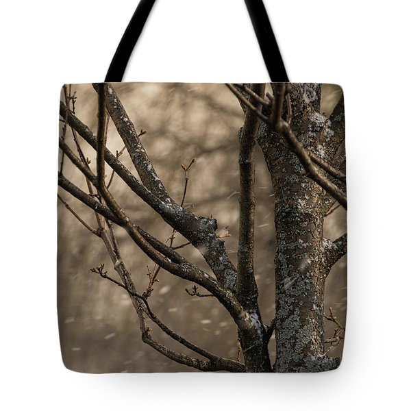 Snow In The Air - Tote Bag