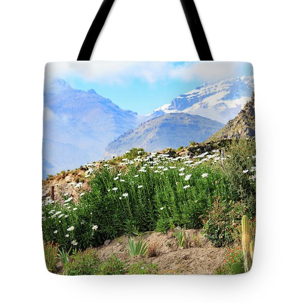 Tote Bag featuring the photograph Snow In The Desert by David Chandler
