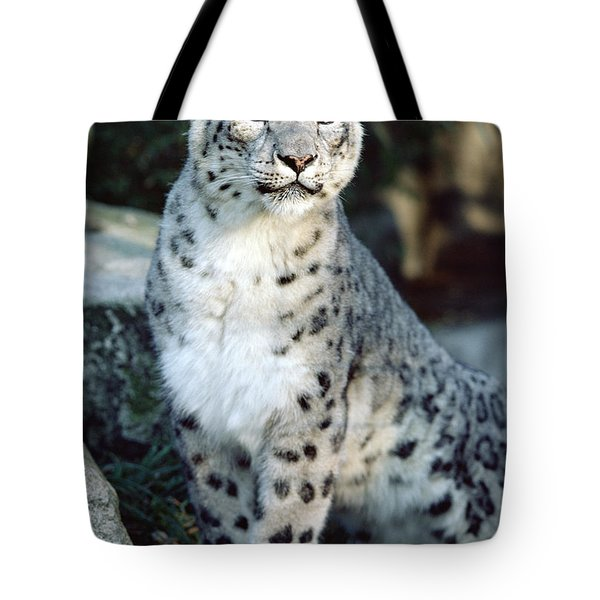 Tote Bag featuring the photograph Snow Leopard Uncia Uncia Portrait by Gerry Ellis