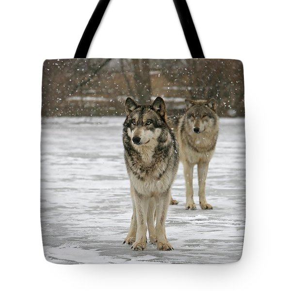 Tote Bag featuring the photograph Snow Mates by Shari Jardina