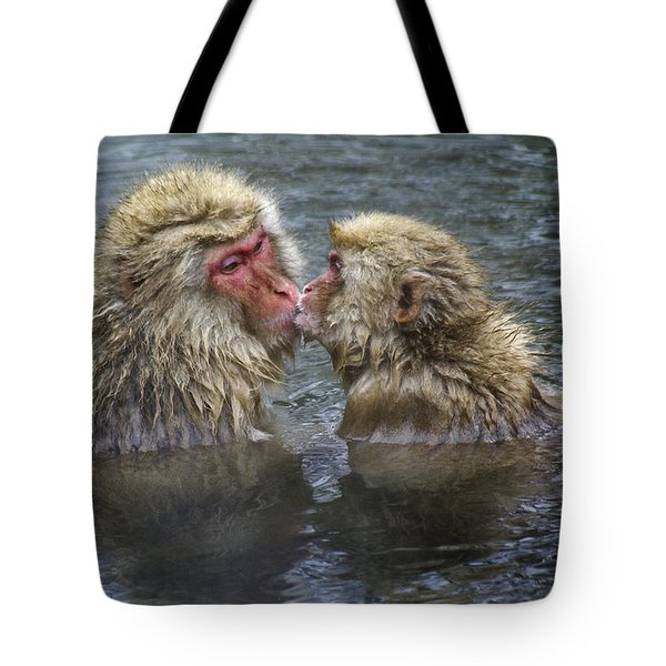 Snow Monkey Kisses Tote Bag