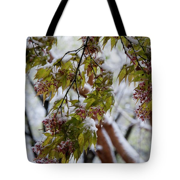 Tote Bag featuring the photograph snow on the Cherry blossoms by Chris Flees