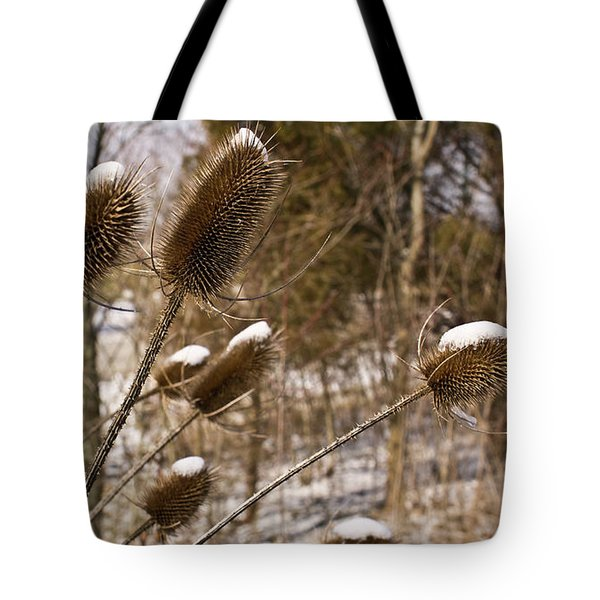 Snow On The Seed Cones Tote Bag