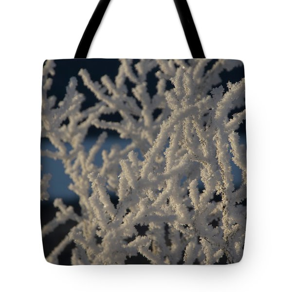 Tote Bag featuring the photograph Snow Scean 4 by Phyllis Spoor