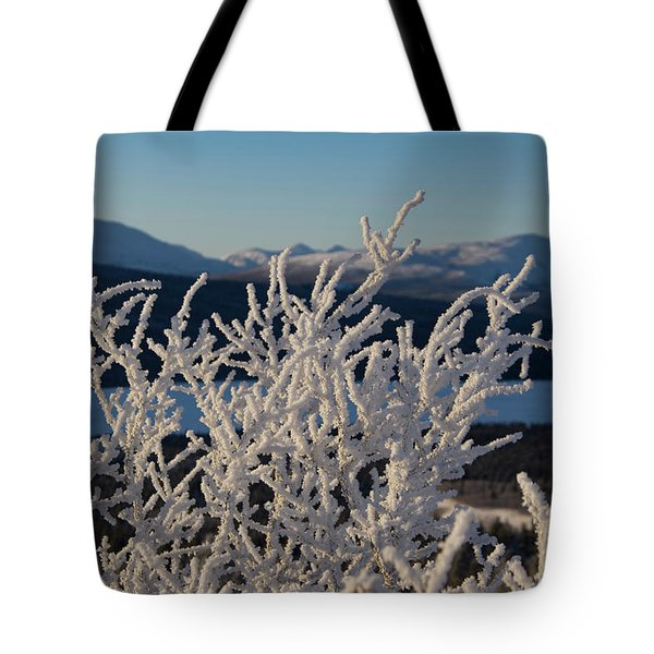 Tote Bag featuring the photograph Snow Scene 5 by Phyllis Spoor