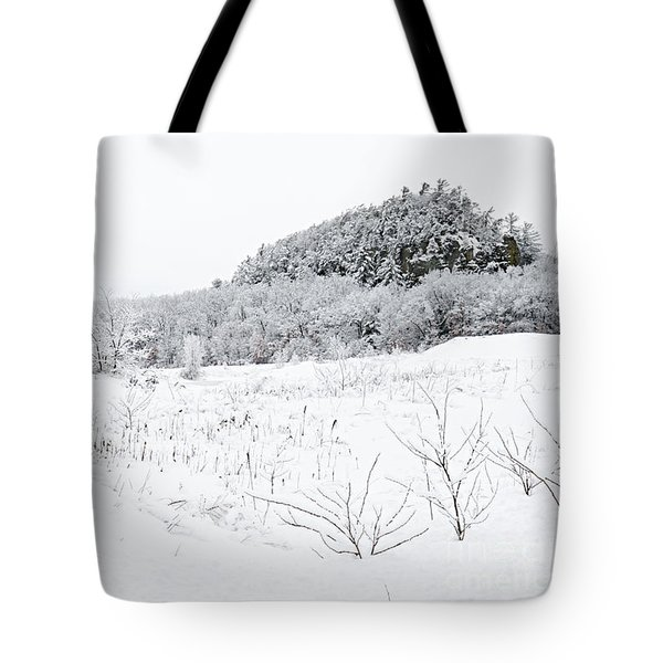 Tote Bag featuring the photograph Snow Scene by Larry Ricker