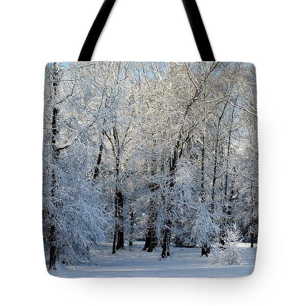 Tote Bag featuring the photograph Snow Scene One by Donna Bentley