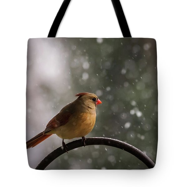 Tote Bag featuring the photograph Snow Showers Female Northern Cardinal by Terry DeLuco