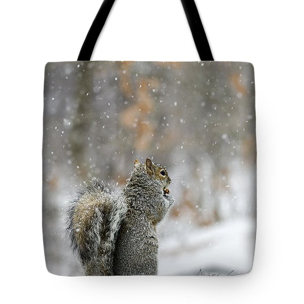 Snow Squirrel Tote Bag