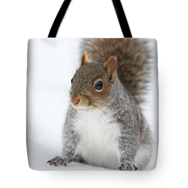 Snow Squirrel Tote Bag by Karol Livote