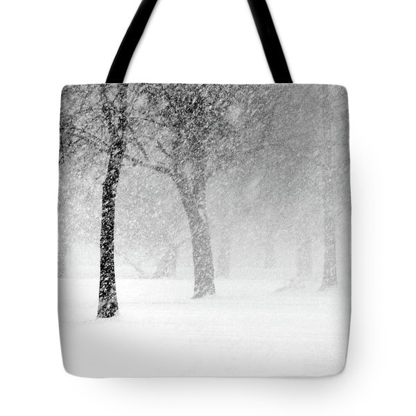 Snow Storm At Starved Rock Tote Bag