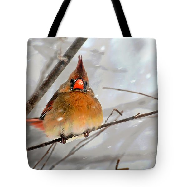 Snow Surprise Tote Bag