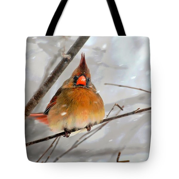 Snow Surprise Tote Bag by Lois Bryan