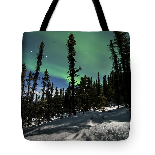 Snow Trails  Tote Bag