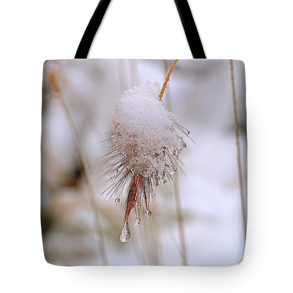 Snow Transfiguration Tote Bag by Rona Black