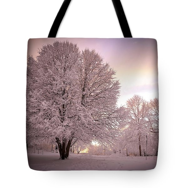 Snow Tree At Dusk Tote Bag