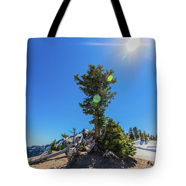 Tote Bag featuring the photograph Snow Tree by Jonny D